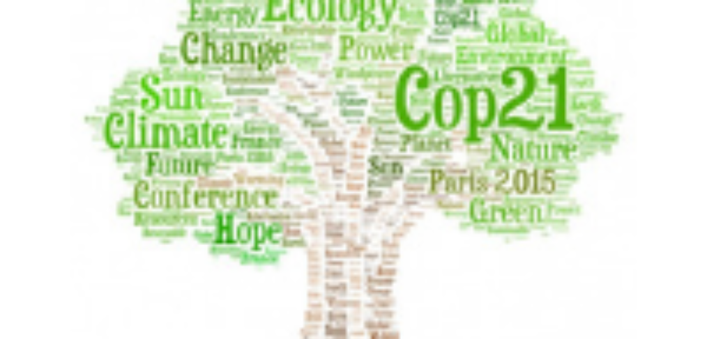 COP 21 PARIGI