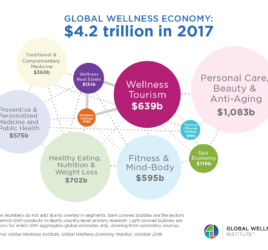 HealthCare & Wellness - global wellness economy 2017